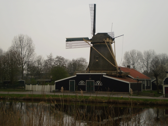 Windmills of the Dutch Landscape