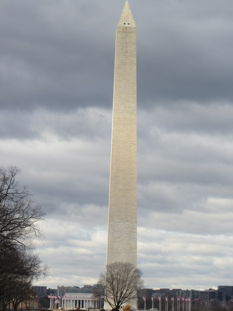 The majestic Washington Monument