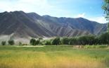 Lhasa Nature 4