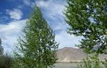 Lhasa Nature 7