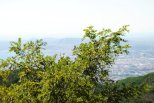 Vesuvius 9